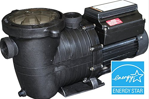 Variable Speed Pool Pump Energy Star Certified Splash Pumps